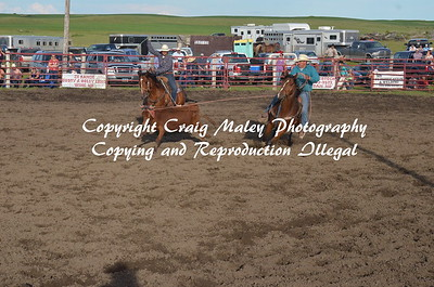 PERF TEAM ROPING 06-20-15
