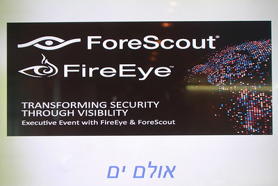Fore Scout 17.11.2016
