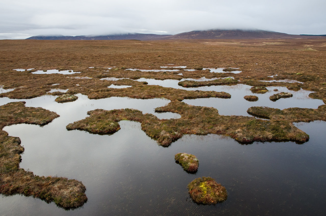 NC500 - Thurso to Durness - Peat bogs