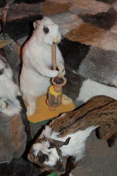 Stuffed rabbits like sheesha too.