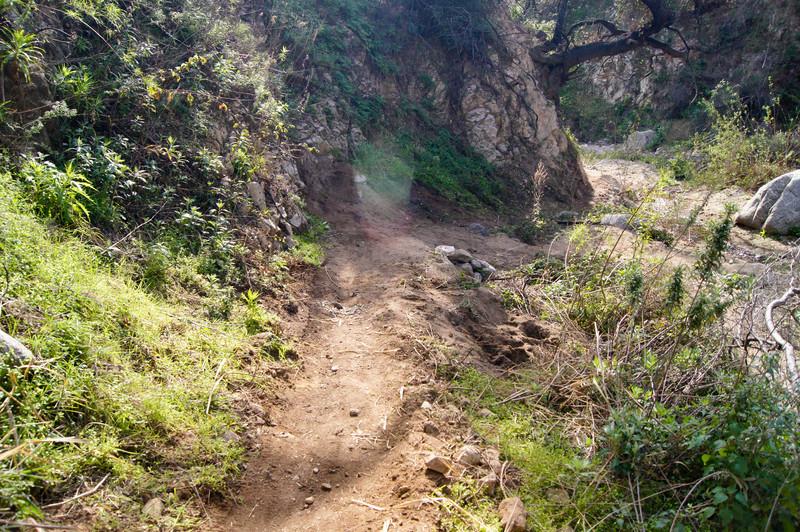 201201291661-El Prieto Trailwork.jpg