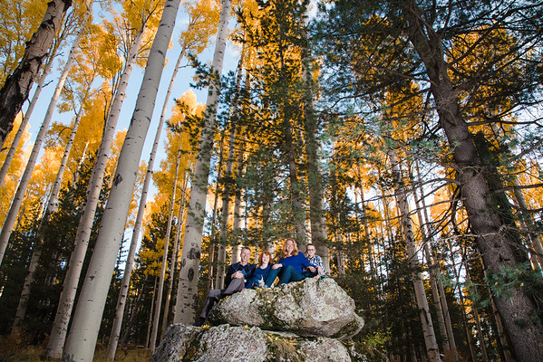 Owens Family | Aspen Corner | Flagstaff Family Photographer