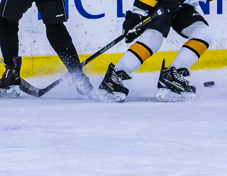 Bruins-125.jpg