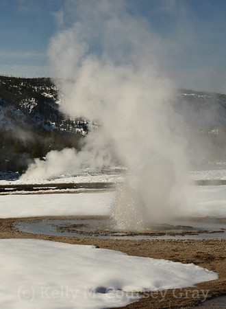 Yellowstone National Park in the Winter