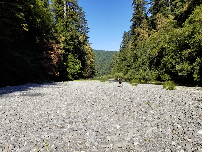 """Getting near the """"Tall Trees Grove"""" - it is at the end of the straight stretch."""