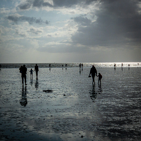 North Sea Mudflats
