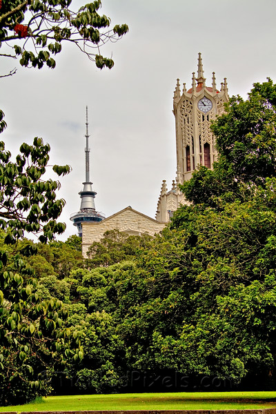 The Clock Tower, U of Auckland