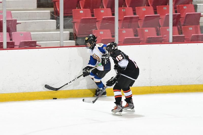 Orda-CANAM-CANAM Hockey 1980 Rink-id224952131.jpg