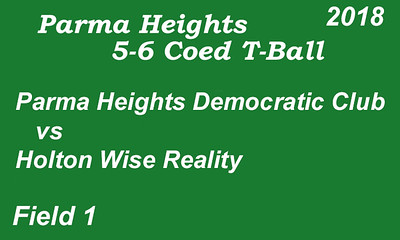 180606 Parma Heights T-Ball field #1
