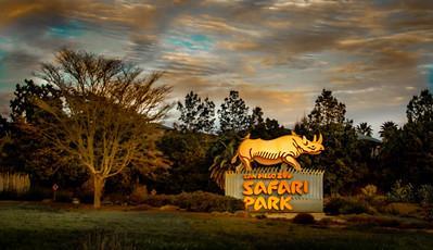 Safari Park, Escondido - Feb 20, 2020