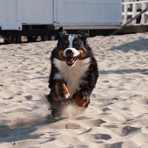 Bonnie aan het strand jun2009