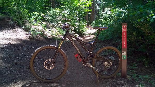 Pioneer Trail - Hallalujah Trail - 2014