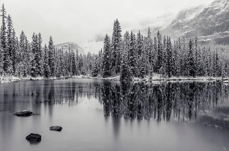 09-16 Lake O'Hara-0002.jpg