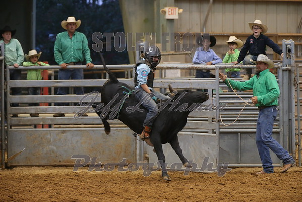 Steer Wrestling & Bullriding