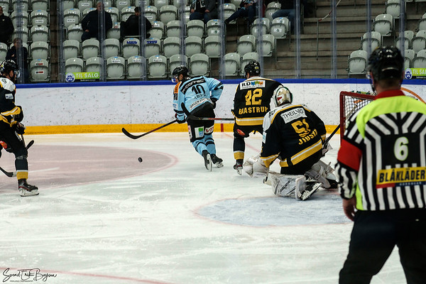 SønderjyskE vs Herlev Eagles. 24.11.2020
