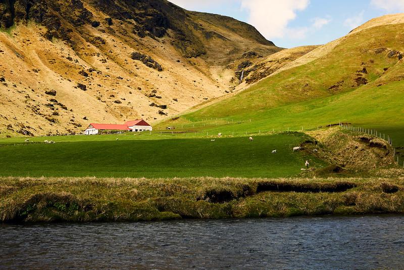 Iceland_39A8612_1.jpg