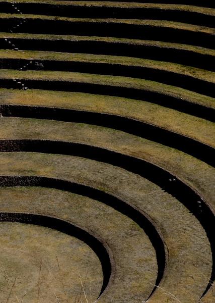 Steps--Moray Terraces, Peru