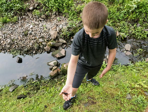 07/30/18 Wesley Bunnell | Staff James LaCroix, age 9, spent time with his mother on Monday afternoon at the pond on Memorial Boulevard catching and releasing crayfish.
