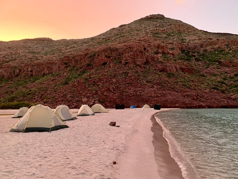 Tents with a sunrise on the beach of Ensenada Grande Sur on Isla Partida while kayaking in Mexico