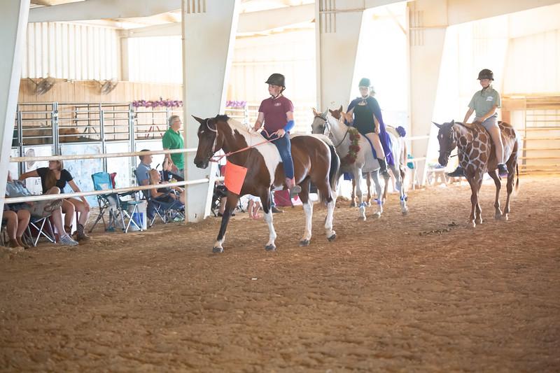 HorseCostume-20.jpg