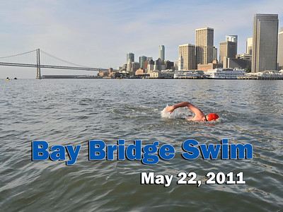 Bay Bridge Swim 2011