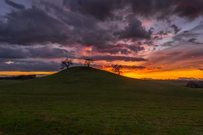 Sacramento Valley
