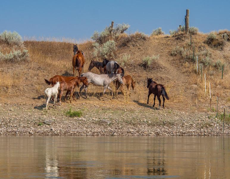 Upper Missouri River Breaks Canoe Trip