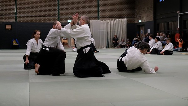 Aikido Examen Roel