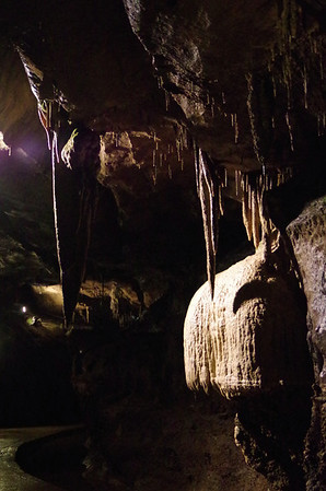 Ingleborough Cave 8 June 2014