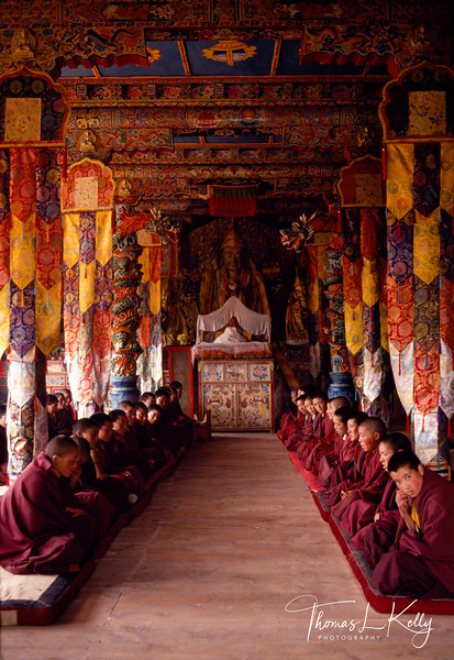 Nuns receiting prayer at Gansi Monastery. Tibet.