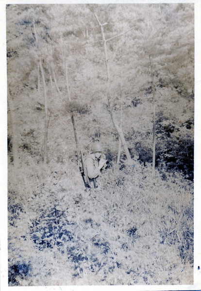 imgab491.jpg