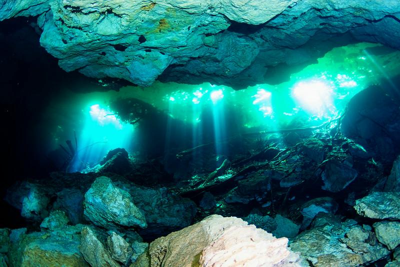 2014 Whale Shark - Cave Adventure-126.jpg