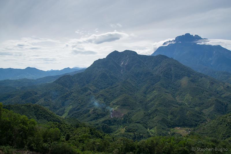 Kinabatangan River-3489.jpg