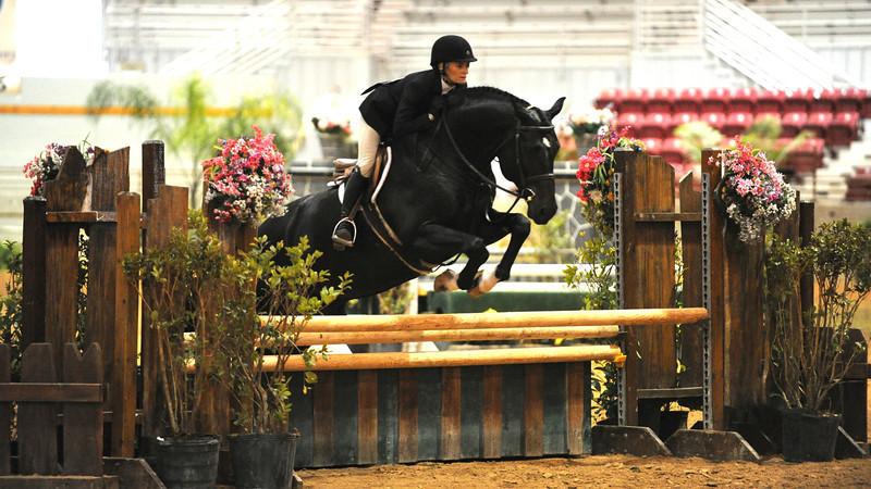 Horse show (18).jpg