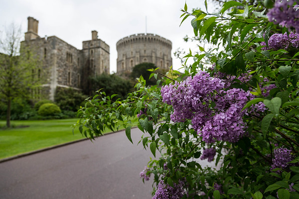 Windsor Castle Stop Over, May 2014