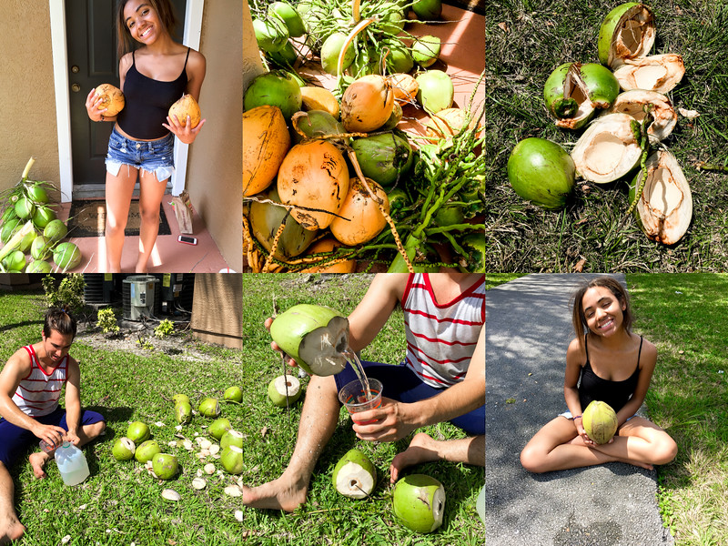making coconut water.jpg
