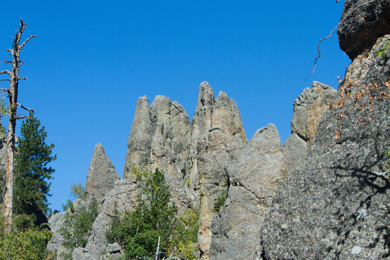 05_Needles Highway_South Dakota-55.jpg