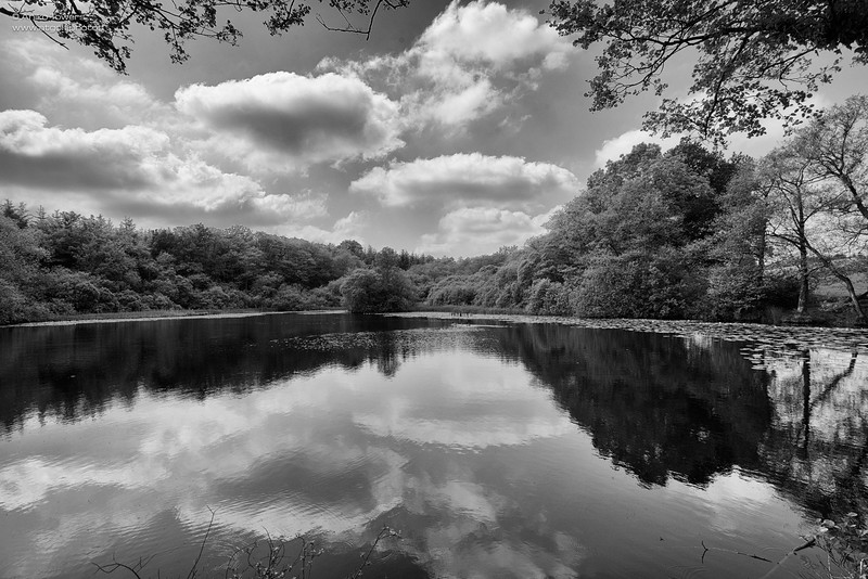 AT Golf Photos by Aniko Towers Vale Resort Golf Course Wales National-10.jpg