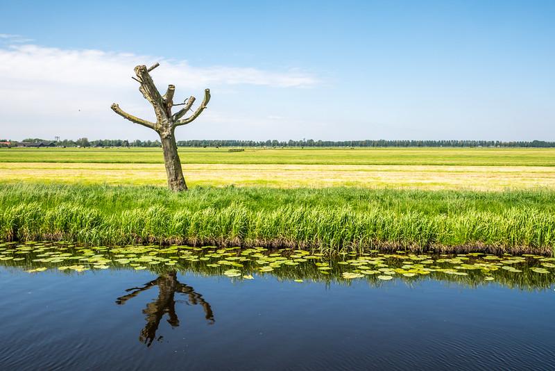 molenviergang Aarlanderveen-96.jpg
