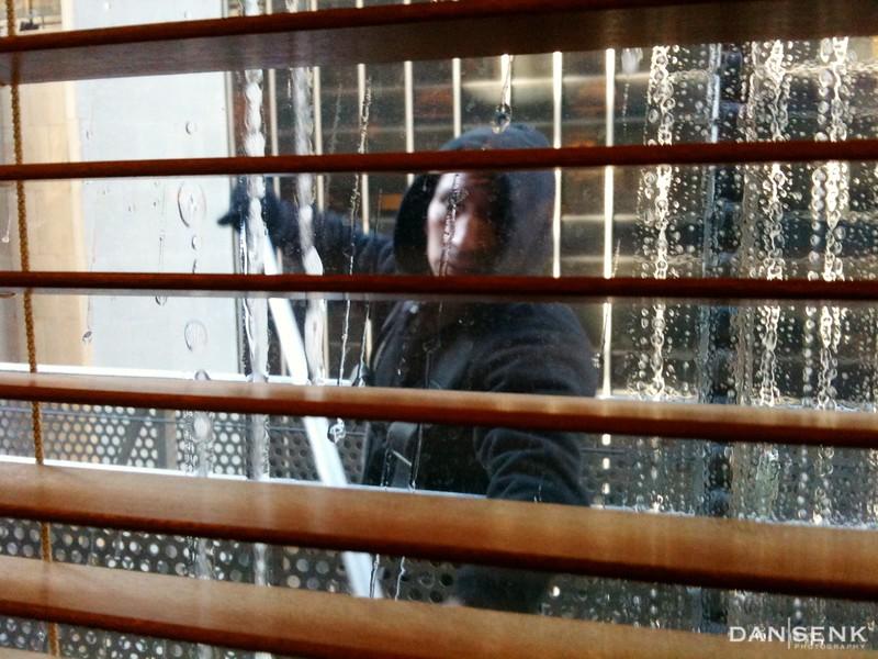 NYC Window Washer