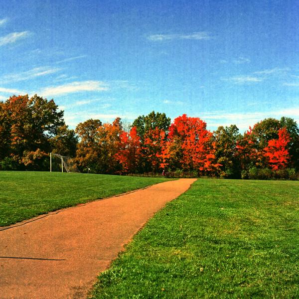 Autumn Hike 120 Film-00031.jpg