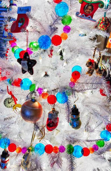 Christmas DSC_4529-Edit-1.jpg