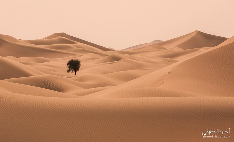 Oman (152).jpg