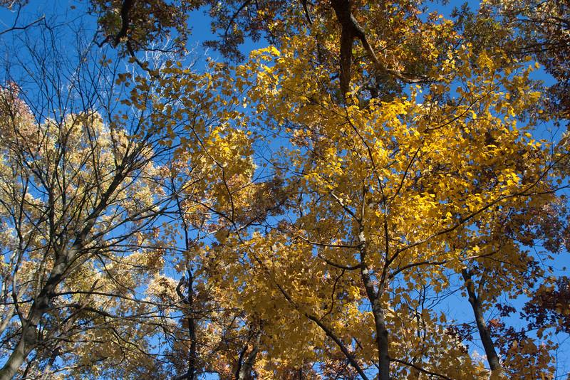 20121021-2012-10-2117-08-2513259.jpg