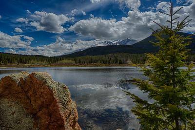 2015 Lily Lake