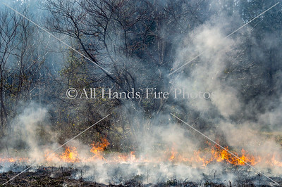 20190323C - Unincorporated Lebanon - Brush Fire