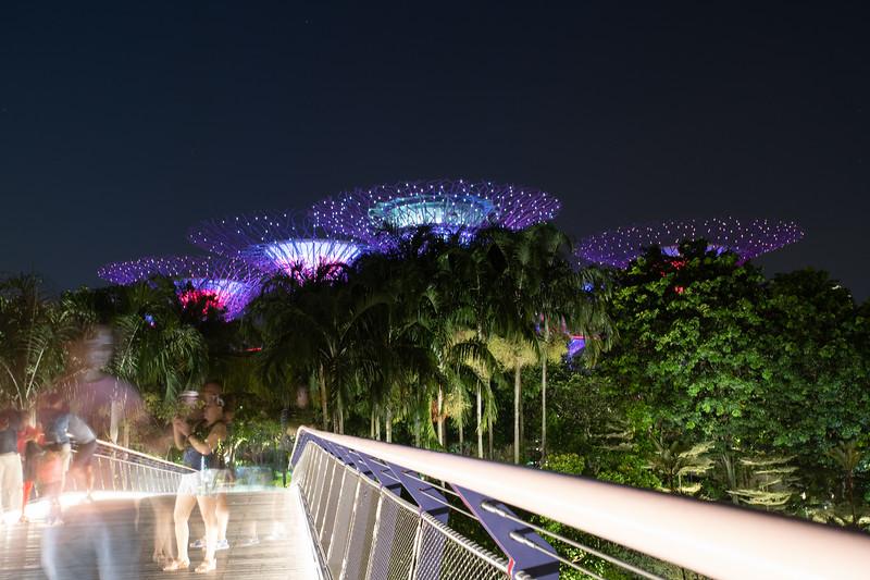 Singapore-19-191.jpg