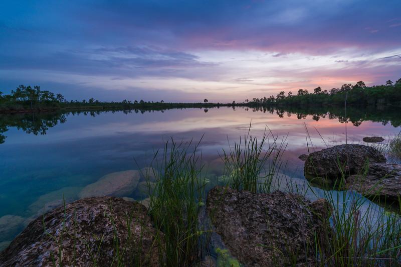 Everglades National Park-6.jpg