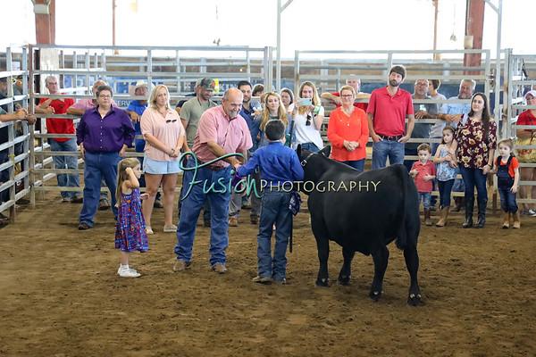 SCF Livestock show 2019