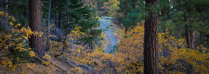 San_Gabriel_Mountains_Fall_Color_Panorama_DSC3255.jpg